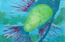 Petite Pisces No.3 Detail 3